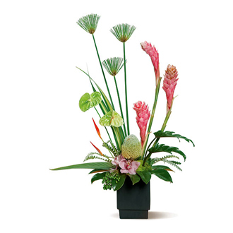 Island Fantasy, ginger, anthurium, orchids, tropical
