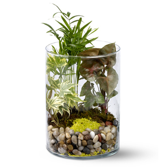 Garden In A Glass, thank you, corporate gifts