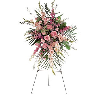 Pink Promise Spray, carnations, gladioli, larkspur, sympathy and funeral
