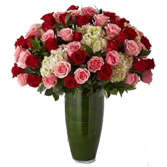 Luxury Rose Bouquet, roses, hydrangea, greens, top of the line