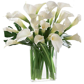 Subtly Exquisite Calla Lilies, top of the line