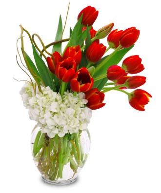 True Love\'s Tulips