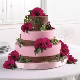 Gerbera Cake Flowers, daisies