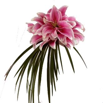 Stargazer Bouquet, bridal bouquet