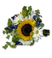 Sunflower Daisy Bouquet, delphinium, buplerum, daisies, bridal bouquet