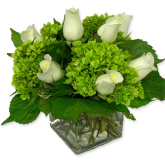 Green Hydrangea and White Rose Cube, wedding centerpieces