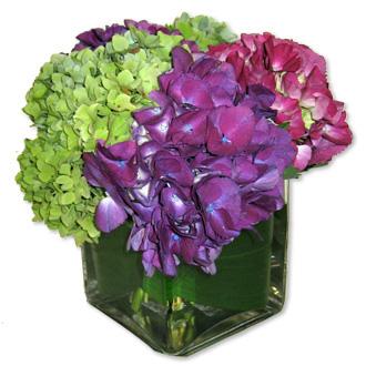 Hydrangea Cube, wedding centerpieces