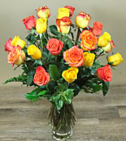 Sun Kissed Roses