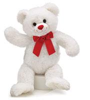 White Plush Carrie Bear