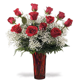 Classic Dozen Long Stem Roses