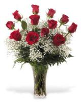 Dozen Long Stem Red Roses With Accent