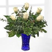 Midnight Moonlight Roses