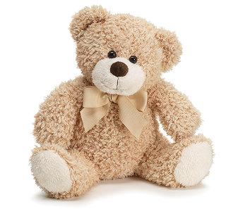 Bailey Bear