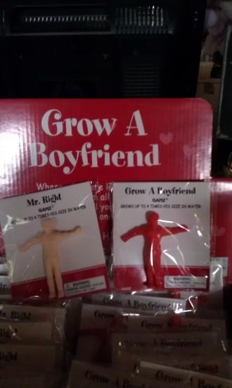 Grow a Boy Friend