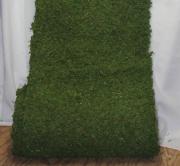 Rental Moss Runner