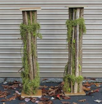 Rental Trunk Columns