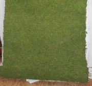 Rental Wide Moss Runner