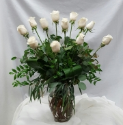 Vendella White Rose