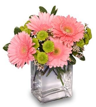 Fruit Sorbet Vase