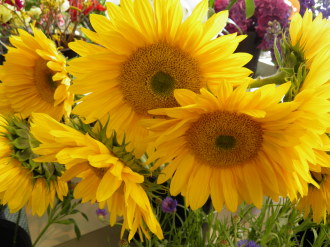 Radiant Sunflower Vase