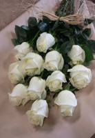 Caan Floral - Serenity