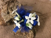 Stephanotis and blue gem Cors