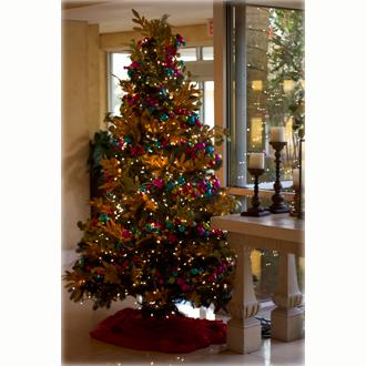Entrance Christmas Tree