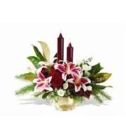 Illumination Lilies