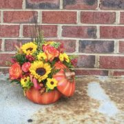 Fall for Sunflowers