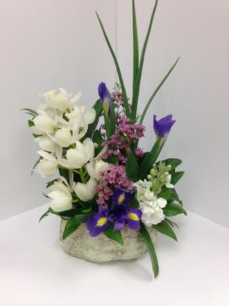 Rockn\' Orchids & Iris Garden