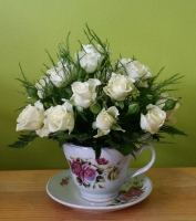White rose in a cup