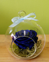 Miracle Blue Rose Ball