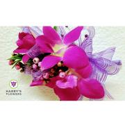 HF Fuschia Orchid Corsag