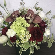 Burgundy Orchid Arrangement