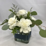 6 Carnation Centerpiece - Standard