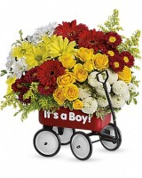 It's a Boy Baby Wagon