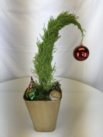 Cypress Grinch Tree
