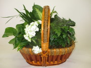 Planter Basket -2