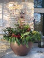 Winter greens pot