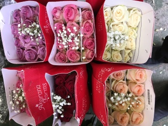 SPECIAL ROSES