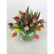 Tailored Tulips