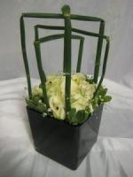 WHITE ROSES EQUISETUM PITTISPORUM