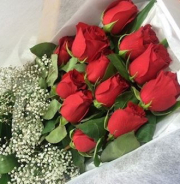 One Dozen Roses Boxed with Baby's Breath