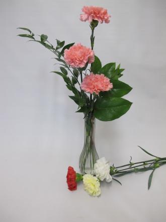 Carnationn Budvase