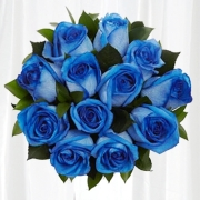 1 Dozen Long Stem Blue Roses In Gift Box