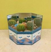 Cactus Garden 2B