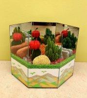 Cactus Garden 5C