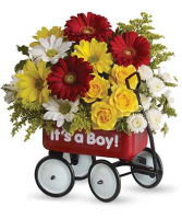 Baby's First Wagon –Boy