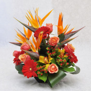 CARISMA FLORISTS® Tropical Pardise CF-09