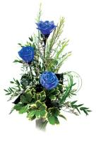 3 Blue Roses